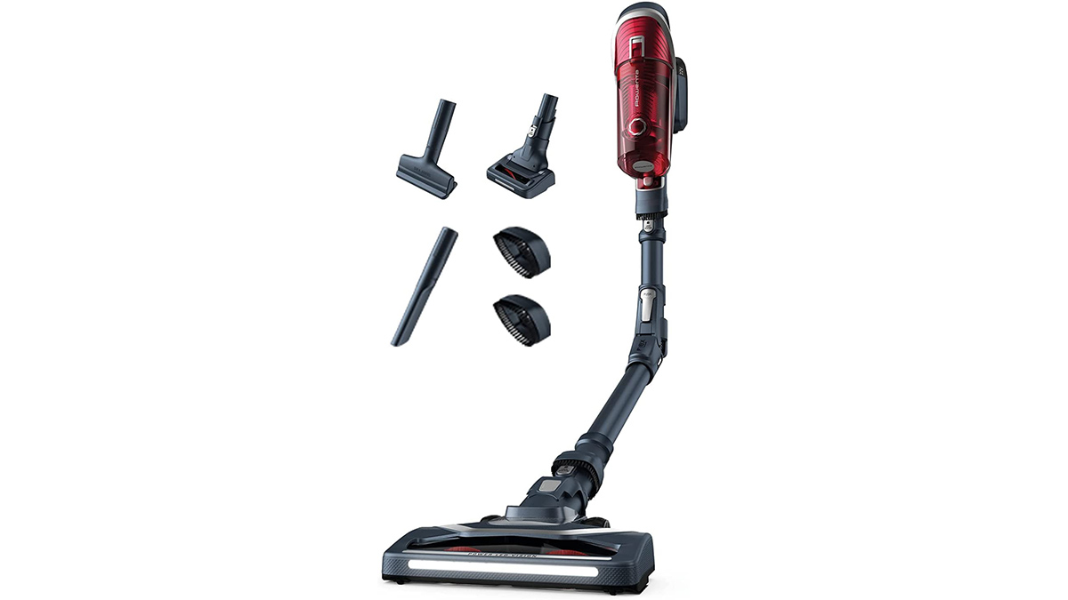 You are currently viewing Rowenta XFORCE FLEX 8.60